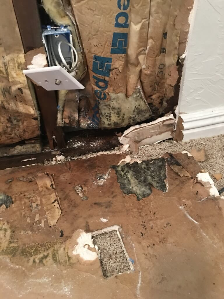 How Bad Can Water Damage Be?